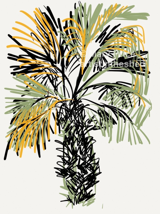 Tenerife Palm drawn with Paper 53 App