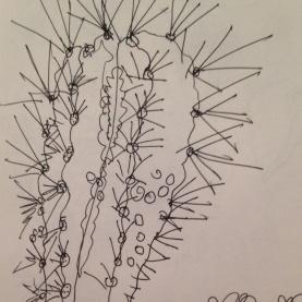 Cacti close up