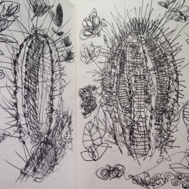 Cacti drawing