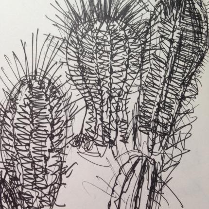Cacti drawing